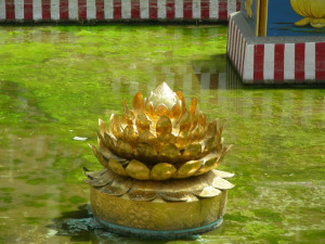 Golden Lotus at Meenakshi Amman Temple